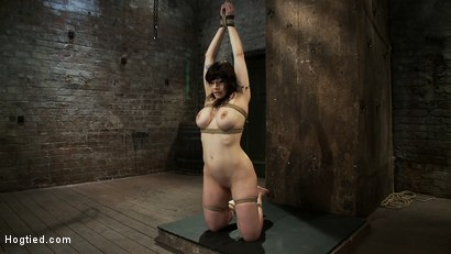 Photo number 3 from Actual member of the site applies to model & is accepted.<br>This big titted MILF is bound & abused. shot for Hogtied on Kink.com. Featuring Annika in hardcore BDSM & Fetish porn.