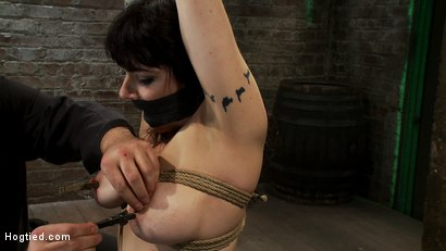 Photo number 7 from Actual member of the site applies to model & is accepted.<br>This big titted MILF is bound & abused. shot for Hogtied on Kink.com. Featuring Annika in hardcore BDSM & Fetish porn.