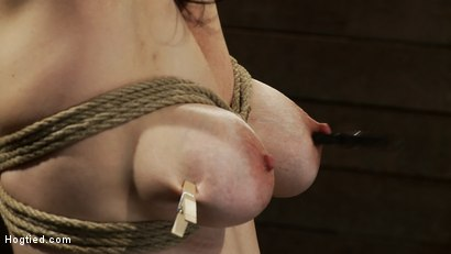 Photo number 9 from Actual member of the site applies to model & is accepted.<br>This big titted MILF is bound & abused. shot for Hogtied on Kink.com. Featuring Annika in hardcore BDSM & Fetish porn.