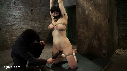 Photo number 12 from Actual member of the site applies to model & is accepted.<br>This big titted MILF is bound & abused. shot for Hogtied on Kink.com. Featuring Annika in hardcore BDSM & Fetish porn.