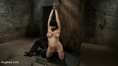 Photo number 13 from Actual member of the site applies to model & is accepted.<br>This big titted MILF is bound & abused. shot for Hogtied on Kink.com. Featuring Annika in hardcore BDSM & Fetish porn.