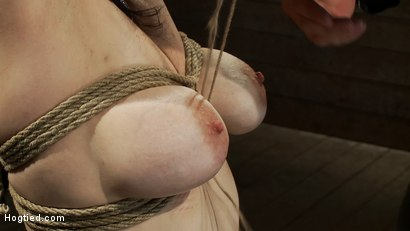 Photo number 5 from Actual member of the site applies to model & is accepted.<br>This big titted MILF is bound & abused. shot for Hogtied on Kink.com. Featuring Annika in hardcore BDSM & Fetish porn.