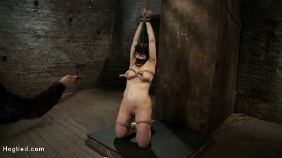 Actual member of the site applies to model & is accepted. This big titted MILF is bound & abused.