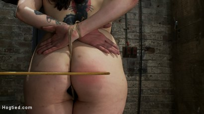 Photo number 6 from Hot busty lifestyle MILF is severely bound with only baling twine<br>Bondage hurts, this is brutal. shot for Hogtied on Kink.com. Featuring Annika in hardcore BDSM & Fetish porn.
