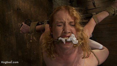 Photo number 10 from Nicki is bound, suspended, manhandled, abused, humiliated, made to cum like a common whore shot for Hogtied on Kink.com. Featuring Nicki Blue in hardcore BDSM & Fetish porn.