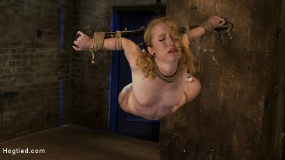 Photo number 11 from Nicki is bound, suspended, manhandled, abused, humiliated, made to cum like a common whore shot for Hogtied on Kink.com. Featuring Nicki Blue in hardcore BDSM & Fetish porn.