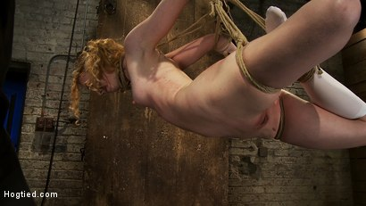 Photo number 12 from Nicki is bound, suspended, manhandled, abused, humiliated, made to cum like a common whore shot for Hogtied on Kink.com. Featuring Nicki Blue in hardcore BDSM & Fetish porn.