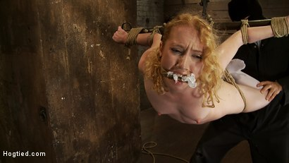 Photo number 6 from Nicki is bound, suspended, manhandled, abused, humiliated, made to cum like a common whore shot for Hogtied on Kink.com. Featuring Nicki Blue in hardcore BDSM & Fetish porn.