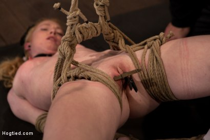 Photo number 12 from Sexy girl next door bound into a brutal back arch from hell.<br>Made to cum like a common slut. shot for Hogtied on Kink.com. Featuring Nicki Blue in hardcore BDSM & Fetish porn.