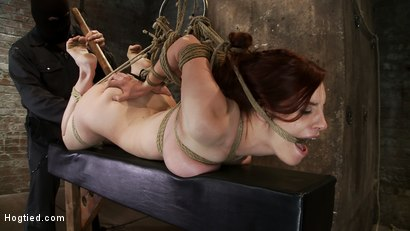 Photo number 7 from 19yr old redhead with massive DD natural tits is hogtied<br>Anal hooked, finger fucked & made to cum shot for Hogtied on Kink.com. Featuring Iona Grace in hardcore BDSM & Fetish porn.