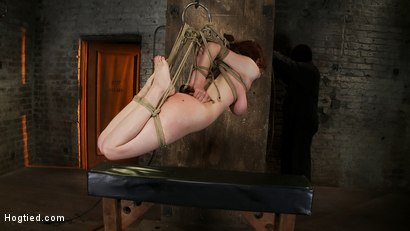 Photo number 13 from 19yr old redhead with massive DD natural tits is hogtied<br>Anal hooked, finger fucked & made to cum shot for Hogtied on Kink.com. Featuring Iona Grace in hardcore BDSM & Fetish porn.