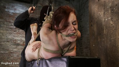 Photo number 9 from 19yr old redhead with massive DD natural tits is hogtied<br>Anal hooked, finger fucked & made to cum shot for Hogtied on Kink.com. Featuring Iona Grace in hardcore BDSM & Fetish porn.