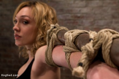 Photo number 1 from Former runway & fashion model is back & helpless   Powerful orgasms are ripped from her sexy pussy. shot for Hogtied on Kink.com. Featuring Lily LaBeau in hardcore BDSM & Fetish porn.