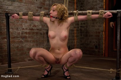 Photo number 14 from Former runway & fashion model is back & helpless   Powerful orgasms are ripped from her sexy pussy. shot for Hogtied on Kink.com. Featuring Lily LaBeau in hardcore BDSM & Fetish porn.