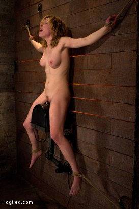 Photo number 7 from With a look of total helplessness is in her eyes, she begs with out saying a word, that is magic. shot for Hogtied on Kink.com. Featuring Lily LaBeau in hardcore BDSM & Fetish porn.