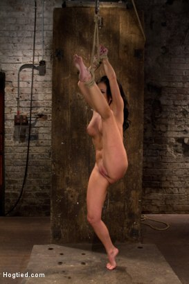 Photo number 1 from Sexy all natural 20yr old with full C breasts does her first Hogtied shoot. <br> Love the cute ones shot for Hogtied on Kink.com. Featuring Tessa Taylor in hardcore BDSM & Fetish porn.
