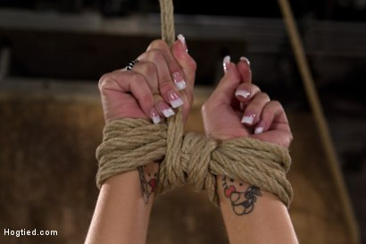 Photo number 11 from Sexy all natural 20yr old with full C breasts does her first Hogtied shoot. <br> Love the cute ones shot for Hogtied on Kink.com. Featuring Tessa Taylor in hardcore BDSM & Fetish porn.