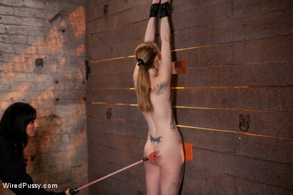 Photo number 5 from Isis Love Torments Innocent Sub with Electricity shot for Wired Pussy on Kink.com. Featuring Ela Darling and Isis Love in hardcore BDSM & Fetish porn.