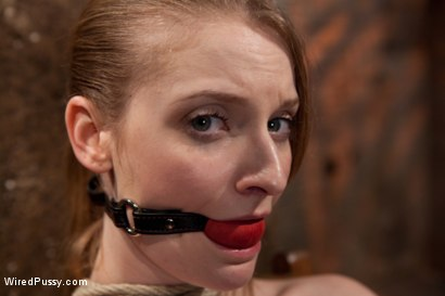 Photo number 2 from Isis Love Torments Innocent Sub with Electricity shot for Wired Pussy on Kink.com. Featuring Ela Darling and Isis Love in hardcore BDSM & Fetish porn.