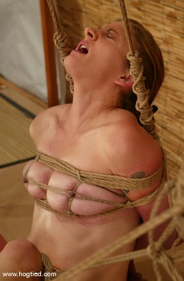Photo number 8 from Carly shot for Hogtied on Kink.com. Featuring Carly in hardcore BDSM & Fetish porn.