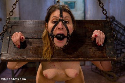 Photo number 8 from Lily's Plaything shot for Whipped Ass on Kink.com. Featuring Lily LaBeau and Ginger Gates in hardcore BDSM & Fetish porn.