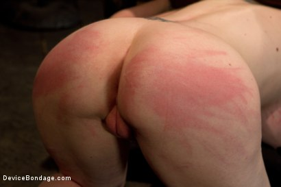 Photo number 8 from Curvy broad suffers for orgasms then strung up by hair suspension. shot for Device Bondage on Kink.com. Featuring Sybil Hawthorne in hardcore BDSM & Fetish porn.