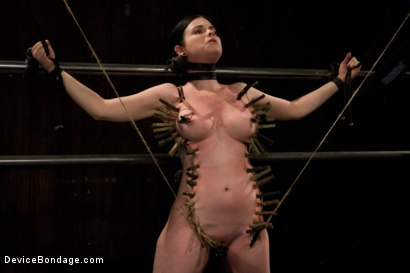 Photo number 2 from Curvy broad suffers for orgasms then strung up by hair suspension. shot for Device Bondage on Kink.com. Featuring Sybil Hawthorne in hardcore BDSM & Fetish porn.