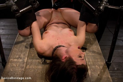 Photo number 1 from Seda is ass-fucked, whipped and caned in hard bondage. shot for Device Bondage on Kink.com. Featuring Seda in hardcore BDSM & Fetish porn.