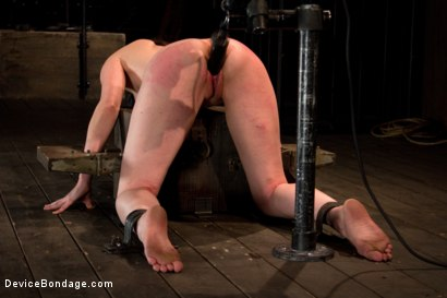 Photo number 13 from Seda is ass-fucked, whipped and caned in hard bondage. shot for Device Bondage on Kink.com. Featuring Seda in hardcore BDSM & Fetish porn.