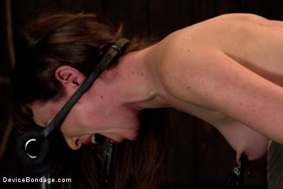 Photo number 12 from Seda is ass-fucked, whipped and caned in hard bondage. shot for Device Bondage on Kink.com. Featuring Seda in hardcore BDSM & Fetish porn.