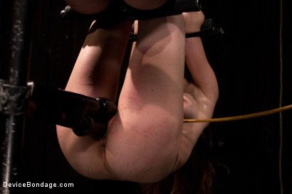 Photo number 7 from Seda is ass-fucked, whipped and caned in hard bondage. shot for Device Bondage on Kink.com. Featuring Seda in hardcore BDSM & Fetish porn.