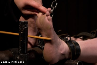 Photo number 8 from Seda is ass-fucked, whipped and caned in hard bondage. shot for Device Bondage on Kink.com. Featuring Seda in hardcore BDSM & Fetish porn.