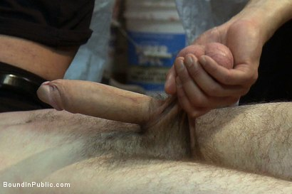 Photo number 9 from Straight stud's butthole gets violated by the Gay Mafia in the paint shop. shot for Bound in Public on Kink.com. Featuring Nick Moretti, Tristan Jaxx and Hayden Russo in hardcore BDSM & Fetish porn.