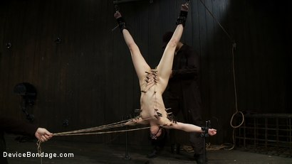 Photo number 8 from Tight Cunt, Tight Body, Inverted shot for Device Bondage on Kink.com. Featuring Juliette March and Ruby Reaper in hardcore BDSM & Fetish porn.