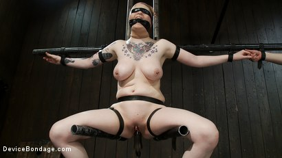 Photo number 14 from Vulnerable pain slut pussy get pulverized by the meanest machines around. shot for Device Bondage on Kink.com. Featuring Juliette March and Ruby Reaper in hardcore BDSM & Fetish porn.