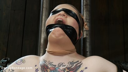 Photo number 7 from Vulnerable pain slut pussy get pulverized by the meanest machines around. shot for Device Bondage on Kink.com. Featuring Juliette March and Ruby Reaper in hardcore BDSM & Fetish porn.