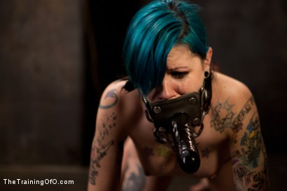 Photo number 13 from Final Exam-blue and red shot for The Training Of O on Kink.com. Featuring Iona Grace and Krysta Kaos in hardcore BDSM & Fetish porn.