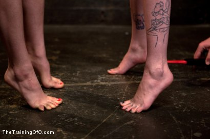 Photo number 14 from Final Exam-blue and red shot for The Training Of O on Kink.com. Featuring Iona Grace and Krysta Kaos in hardcore BDSM & Fetish porn.