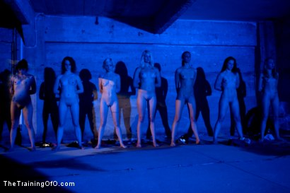 Photo number 2 from February 7 Slave Intake shot for The Training Of O on Kink.com. Featuring Emma Haize, Cheyenne Jewel, Sparky Sin Claire, Michelle, Shae Simone, Natasha Lyn, Tiffany Tyler and Maestro in hardcore BDSM & Fetish porn.