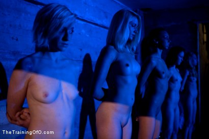 Photo number 3 from February 7 Slave Intake shot for The Training Of O on Kink.com. Featuring Emma Haize, Cheyenne Jewel, Sparky Sin Claire, Michelle, Shae Simone, Natasha Lyn, Tiffany Tyler and Maestro in hardcore BDSM & Fetish porn.