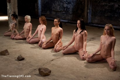 Photo number 8 from February 7 Slave Intake shot for The Training Of O on Kink.com. Featuring Emma Haize, Cheyenne Jewel, Sparky Sin Claire, Michelle, Shae Simone, Natasha Lyn, Tiffany Tyler and Maestro in hardcore BDSM & Fetish porn.