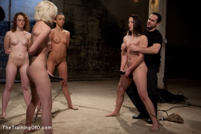 Photo number 9 from February 7 Slave Intake shot for The Training Of O on Kink.com. Featuring Emma Haize, Cheyenne Jewel, Sparky Sin Claire, Michelle, Shae Simone, Natasha Lyn, Tiffany Tyler and Maestro in hardcore BDSM & Fetish porn.