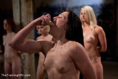 Photo number 14 from February 7 Slave Intake shot for The Training Of O on Kink.com. Featuring Emma Haize, Cheyenne Jewel, Sparky Sin Claire, Michelle, Shae Simone, Natasha Lyn, Tiffany Tyler and Maestro in hardcore BDSM & Fetish porn.