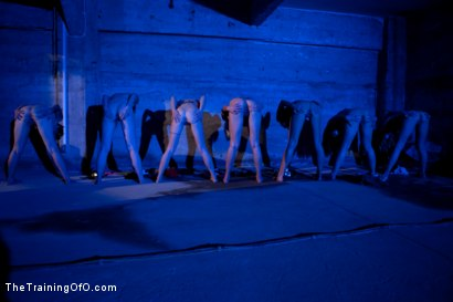 Photo number 15 from February 7 Slave Intake shot for The Training Of O on Kink.com. Featuring Emma Haize, Cheyenne Jewel, Sparky Sin Claire, Michelle, Shae Simone, Natasha Lyn, Tiffany Tyler and Maestro in hardcore BDSM & Fetish porn.