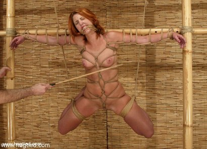 Photo number 2 from Torque and Ivy shot for Hogtied on Kink.com. Featuring Ivy and Torque in hardcore BDSM & Fetish porn.