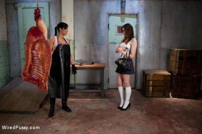 Photo number 2 from Snobby Rich Bitch gets put in her Place and Used Like a Piece of Meat shot for Wired Pussy on Kink.com. Featuring Isis Love and Missy Minks in hardcore BDSM & Fetish porn.
