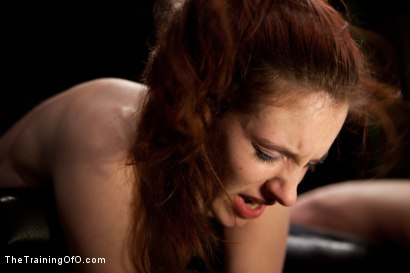 Photo number 14 from Day 5 red and blue shot for The Training Of O on Kink.com. Featuring Iona Grace, Krysta Kaos and Tom Moore in hardcore BDSM & Fetish porn.