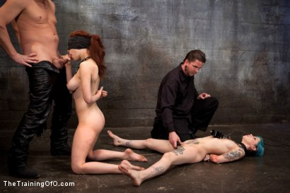 Photo number 6 from Day 5 red and blue shot for The Training Of O on Kink.com. Featuring Iona Grace, Krysta Kaos and Tom Moore in hardcore BDSM & Fetish porn.