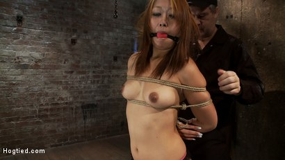Photo number 4 from Hot Japanese girl in traditional Japanese tie.<br>Sounds just like Anime when she cums, true story. shot for Hogtied on Kink.com. Featuring Yuki Mori in hardcore BDSM & Fetish porn.