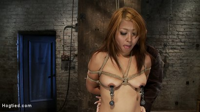 Photo number 6 from Hot Japanese girl in traditional Japanese tie.<br>Sounds just like Anime when she cums, true story. shot for Hogtied on Kink.com. Featuring Yuki Mori in hardcore BDSM & Fetish porn.
